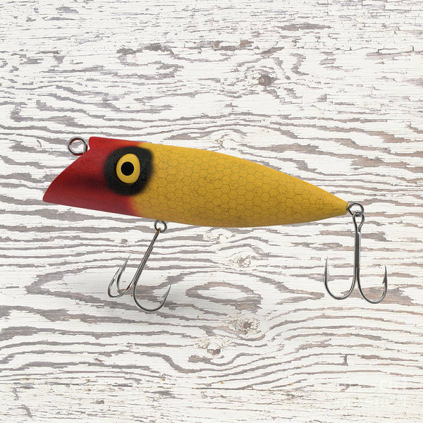 Wall Art - Digital Art - Fishing Lure by Edward Fielding