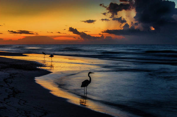 Photograph - Fishing On The Edge by Michael Thomas