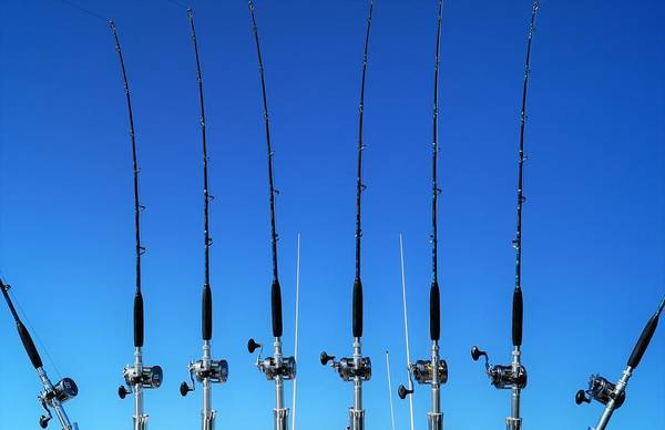 Angling Art Photograph - Fishing Rods  by Andrea Rea