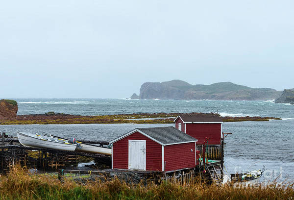 Photograph - Fishing Stages In Twillingate,  Newfoundland by Les Palenik