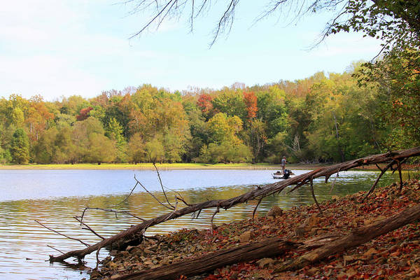 Between The Trees Photograph - Fishing Sugar Bay Kentucky by Art Block Collections