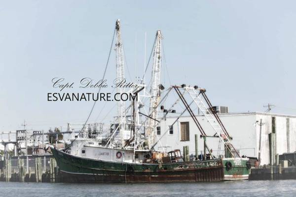 Photograph - Fishing Vessel 7 by Captain Debbie Ritter