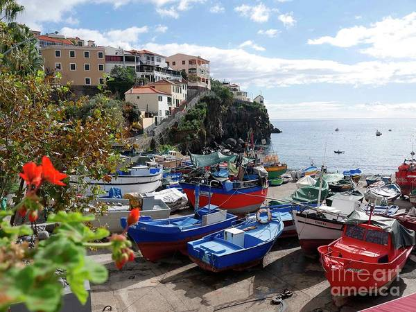 Photograph - Fishing Village On The Island Of Madeira by Brenda Kean