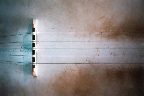 Americana Photograph - Five String Banjo by Scott Norris