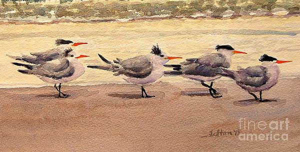Painting - Five Terns by Julianne Felton