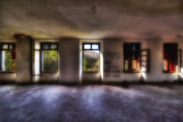 Photograph - Five Windows On The Wood - Cinque Finestre Sul Bosco by Enrico Pelos