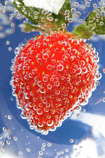 Blue Berry Photograph - Fizzy Strawberry With Bubbles On Blue Background by Sergey Taran