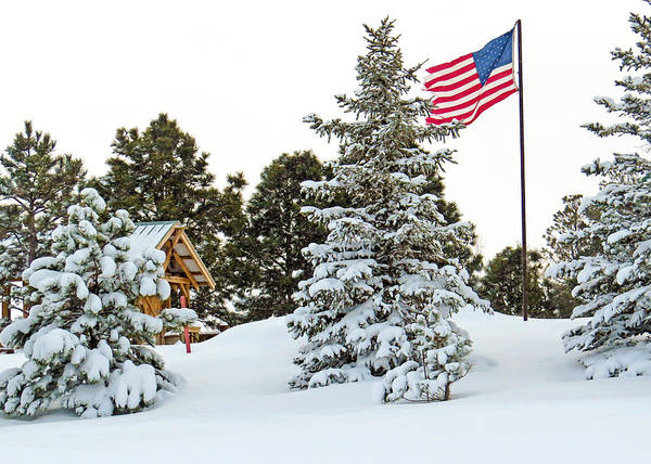 Wall Art - Photograph - Flag And Snowy Pines by Dawn Key