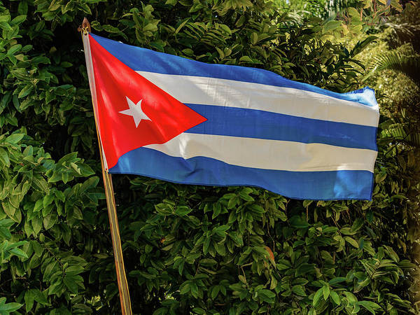 Photograph - Flag Of Cuba by Robin Zygelman