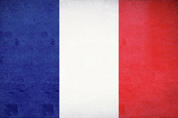 Francaise Digital Art - Flag Of France Grunge by Roy Pedersen
