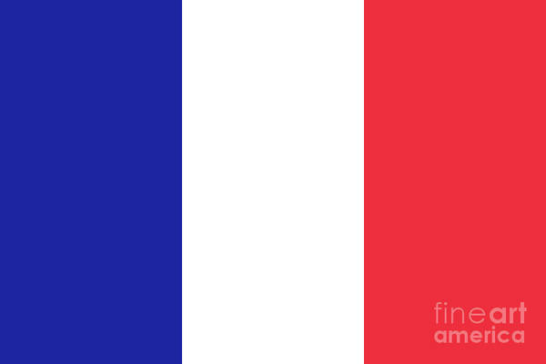 Wall Art - Digital Art - Flag Of France High Quality Authentic Image by Bruce Stanfield