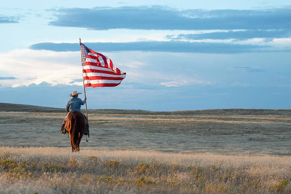 Landmark Photograph - Flag Of Freedom by Pamela Steege