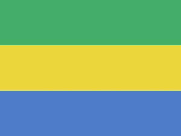 Gabonese Digital Art - Flag Of Gabon by Roy Pedersen