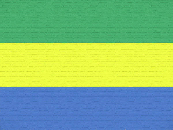 Gabonese Digital Art - Flag Of Gabon Wall. by Roy Pedersen