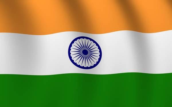 Flower Digital Art - Flag Of India by Maye Loeser