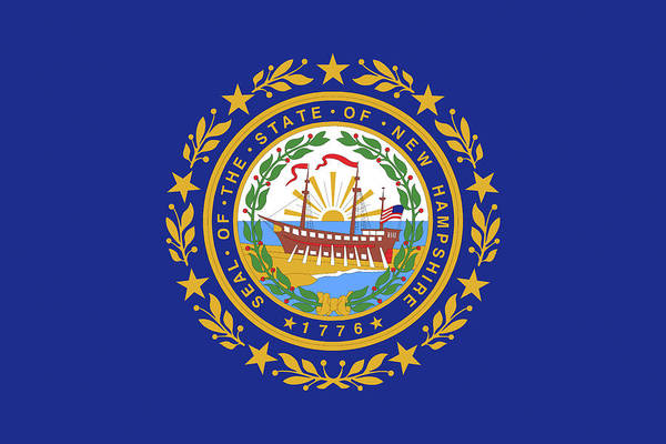 Granite State Digital Art - Flag Of New Hampshire by Roy Pedersen