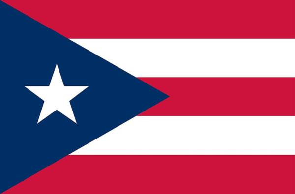 Painting - Flag Of Puerto Rico by Unknown