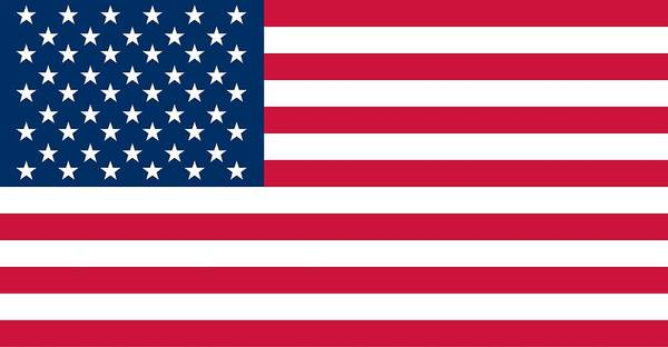 Painting - Flag Of The United States Of America by American School