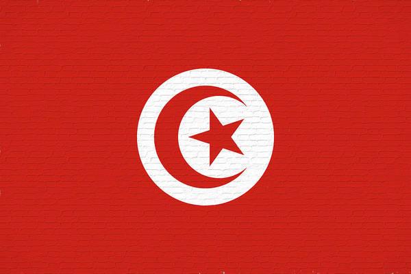 Tunisia Digital Art - Flag Of Tunisia Wall by Roy Pedersen