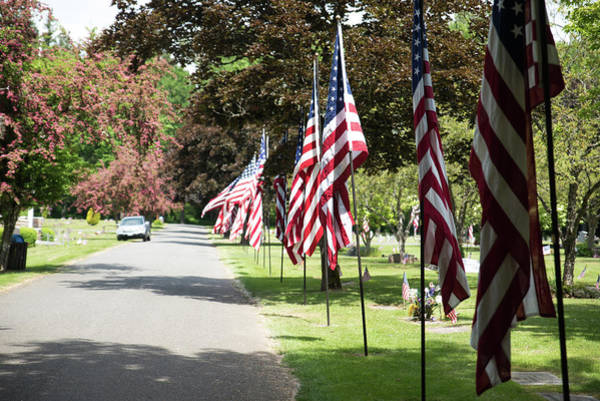 Photograph - Flag Parade by Tom Cochran