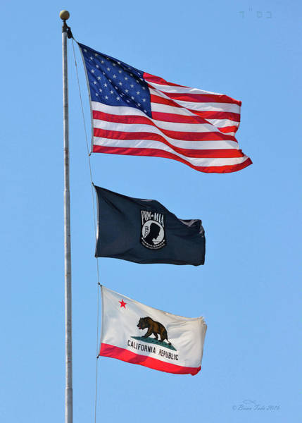 Photograph - Flags Of Honor by Brian Tada
