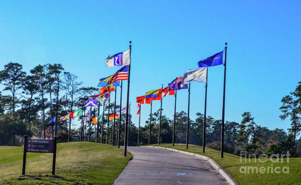 Photograph - Flags Of Tpc Sawgrass by Randy J Heath