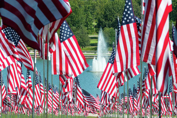 Photograph - Flags On Art Hill by Steve Stuller