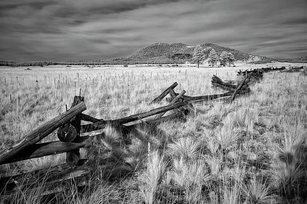 Flagstaff Photograph - Flagstaff Backwoods by Jon Glaser