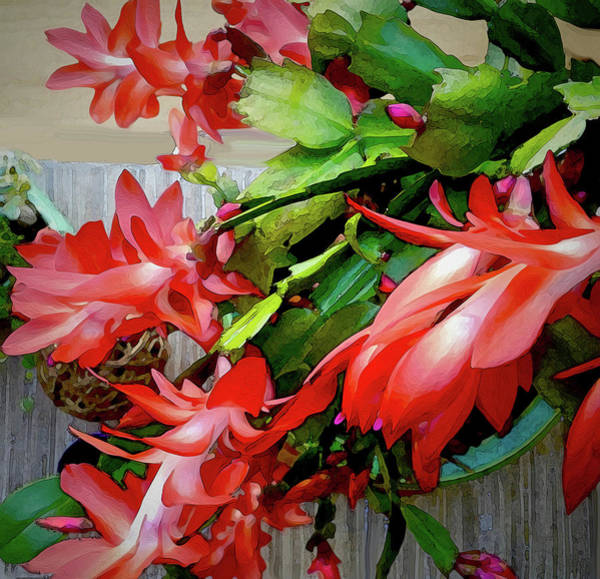Digital Art - Flamboyance by Gina Harrison