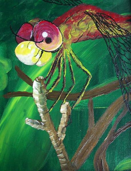 Painting - Flame The Dragonfly by Belinda Cox