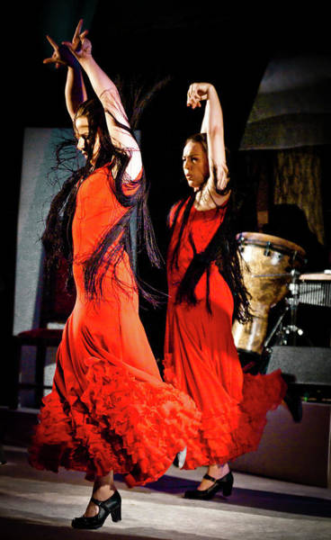 Photograph - Flamenco 38 by Catherine Sobredo