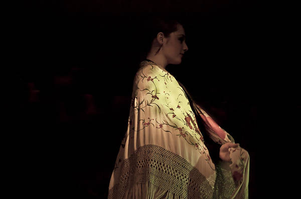 Photograph - Flamenco Series 18 by Catherine Sobredo