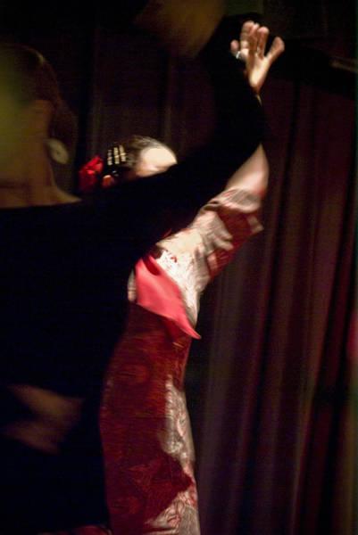 Photograph - Flamenco Series 22 by Catherine Sobredo