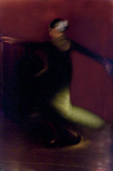 Photograph - Flamenco Series 28 by Catherine Sobredo