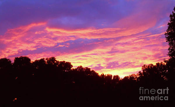 Photograph - Flames In The Sky by D Hackett