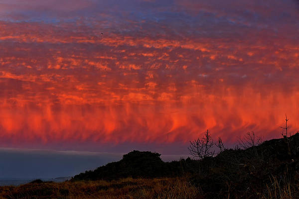 Wall Art - Photograph - Flames Over The Pacific  by Kathleen Bishop