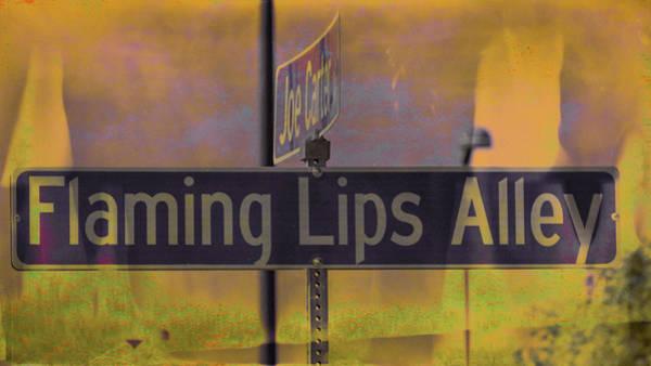 Wall Art - Photograph - Flaming Lips Alley by Debra Martz