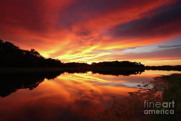 Wall Art - Photograph - Flaming Sunset by Rick Mann