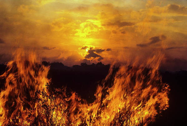 Photograph - Flaming Sunset by Robert Potts