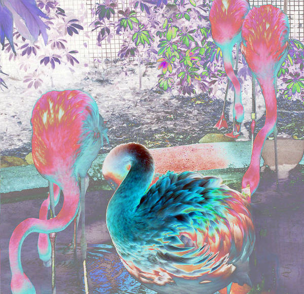 Photograph - Flamingo Abstract 1 by Elyza Rodriguez