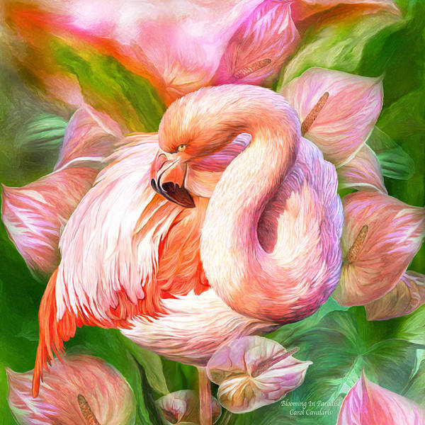 Mixed Media - Flamingo And Flowers -blooming In Paradise Sq by Carol Cavalaris