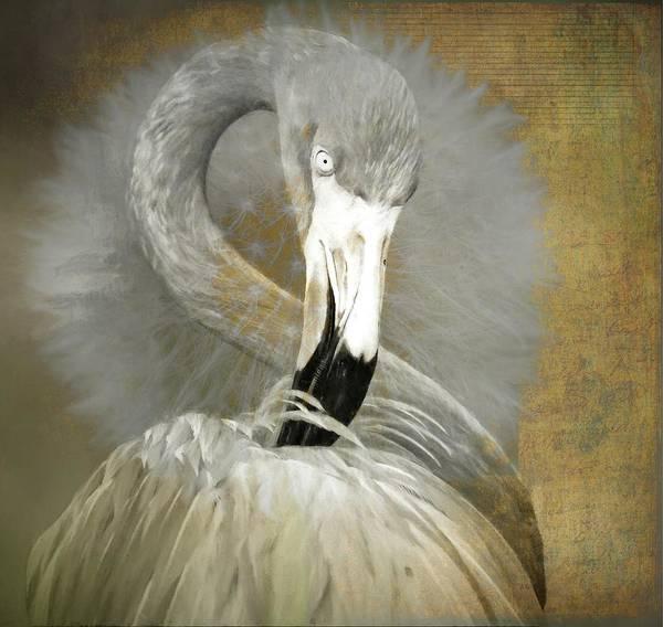Photograph - Flamingo Dandelion by Alice Gipson