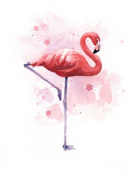 Flamingo Watercolor Painting - Flamingo by David Rogers
