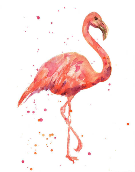 Flamingo Watercolor Painting - Flamingo Facing Right by Alison Fennell