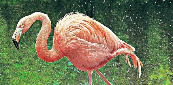 Photograph - Flamingo Green Splashes by Alice Gipson