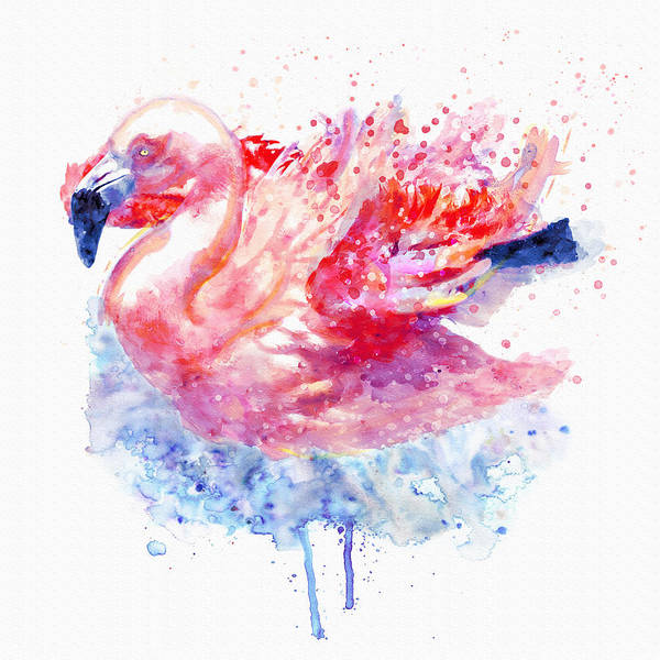 Flamingo Watercolor Painting - Flamingo On The Water by Marian Voicu