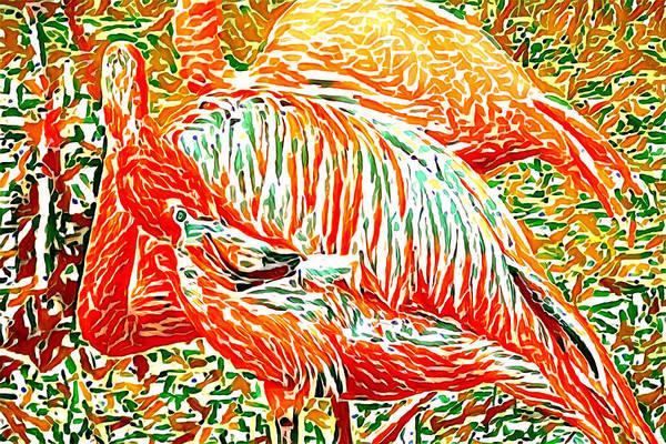 Photograph - Flamingo Oranges by Alice Gipson