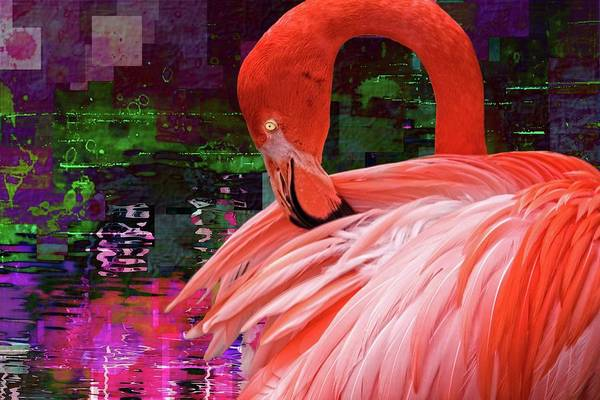 Photograph - Flamingo Purples by Alice Gipson