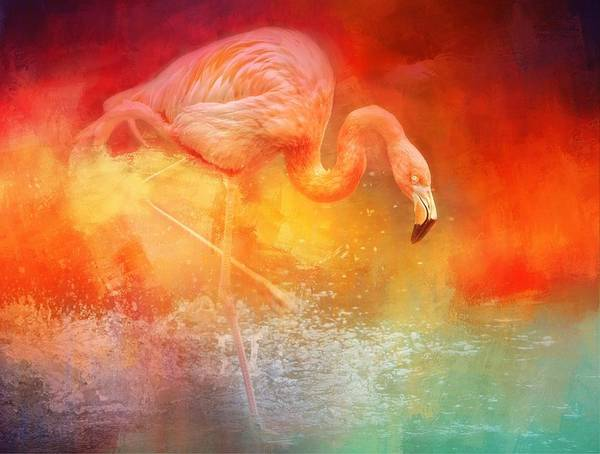 Photograph - Flamingo Reds by Alice Gipson