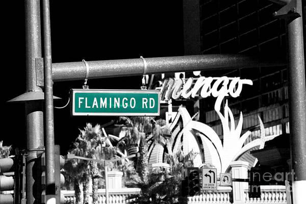 Photograph - Flamingo Road Fusion by John Rizzuto
